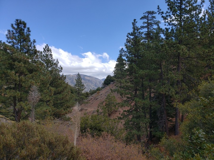 Vincent Gap trail head, Angeles National Forest