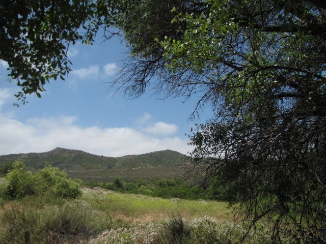 Hills in the Dilley Preserve, Laguna Coast Wilderness Park, Orange County, CA