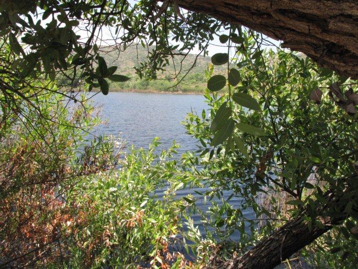 Barbara's Lake, Orange County's only natural lake