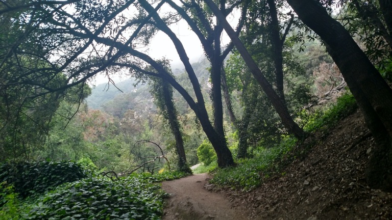 Trail to Sturtevant Falls, Angeles National Forest, CA