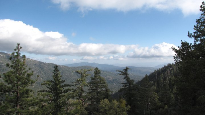 San Bernardino National Forest panorama as seen from the Deer Springs Trail, Idyllwild, CA