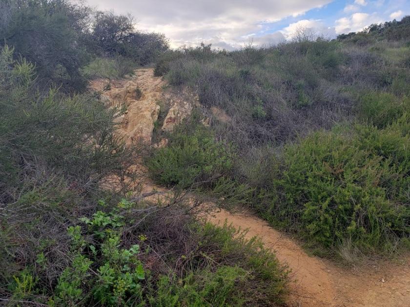 Trail to Skull Rock, Santa Monica Mountains, CA