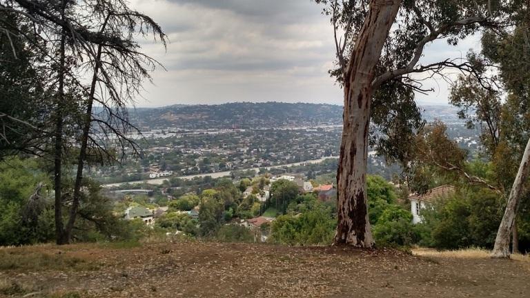 Cedar Grove, Griffith Park, CA