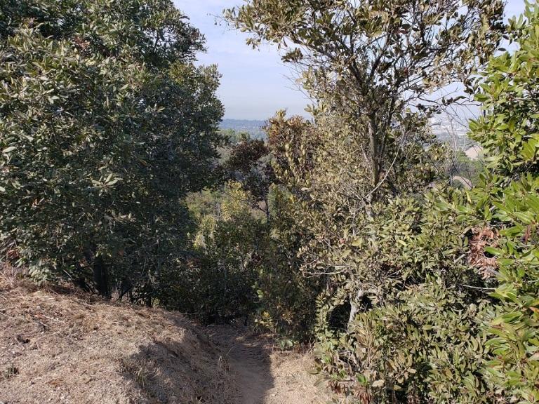 George F Canyon Preserve, Rancho Palos Verdes, CA