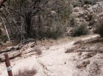 1:00 - Junction with the Pacific Crest Trail, turn right