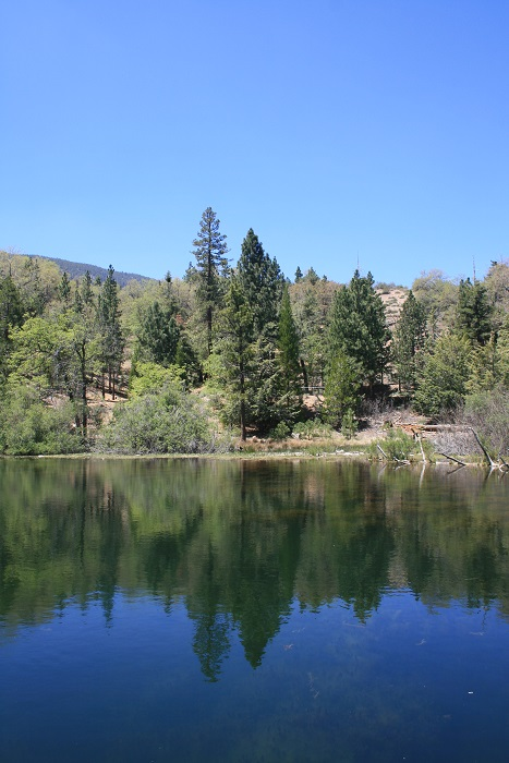 Jenks Lake San Bernardino Mountains
