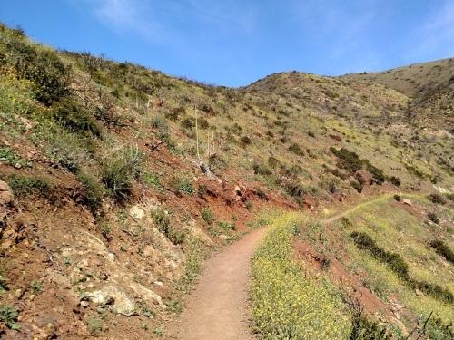 Ray Miller Trail v2