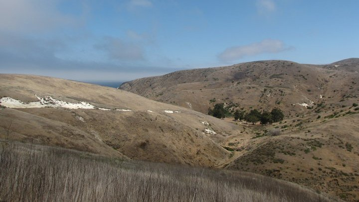 Rolling hills near Scorpion Anchorage on eastern Santa Cruz Island, California