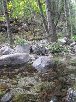 Crossing Winter Creek