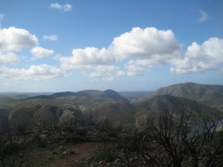 Bernardo Mountain summit