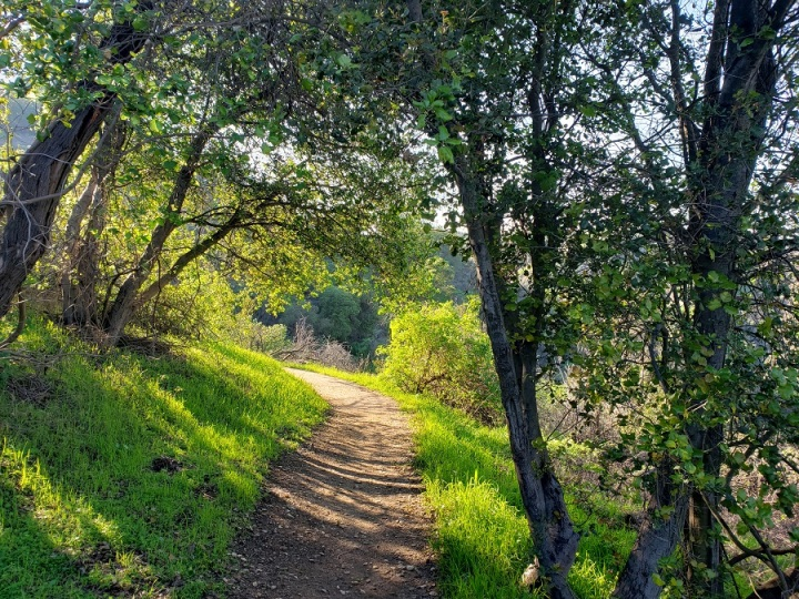 Coyote Trail, Puente Hills, CA