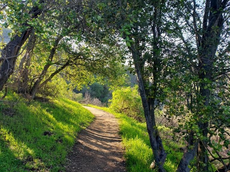 Coyote Trail, Puente Hills, CA