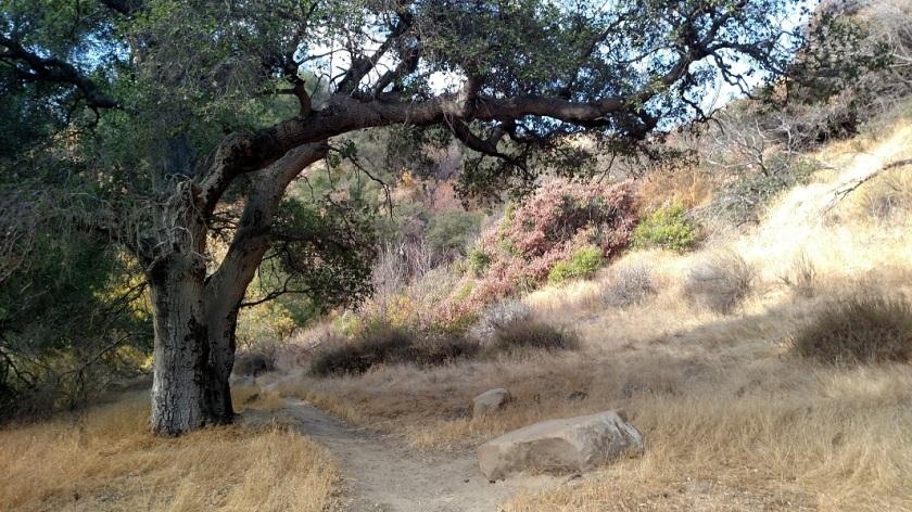 Rice Canyon, Santa Clarita, CA