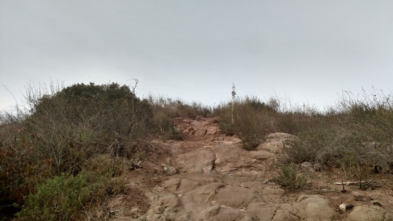 Hawk Trail, Santiago Oaks Regional Park