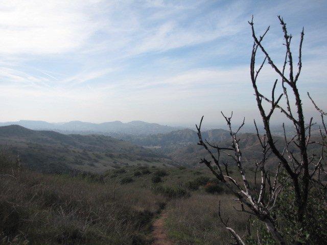 Barham Ridge Trail, Santiago Oaks Regional Park, CA