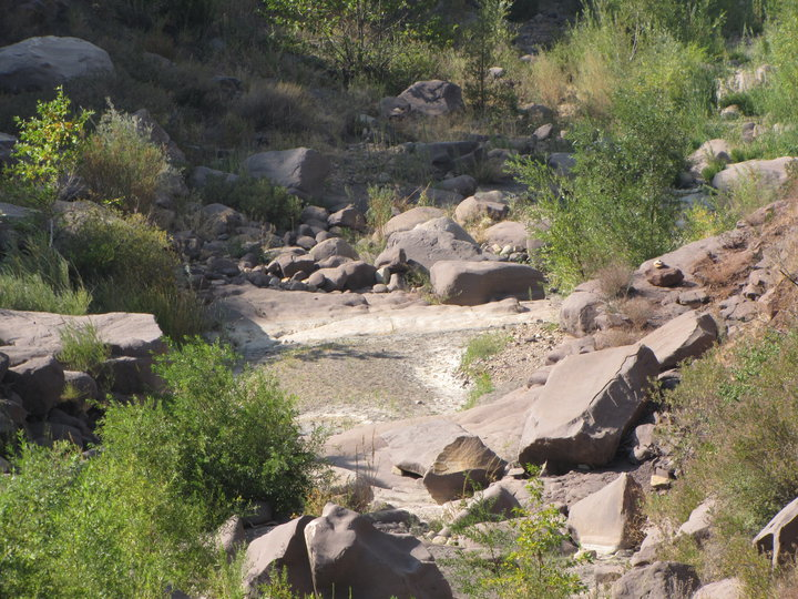 Tar Creek, Los Padres National Forest