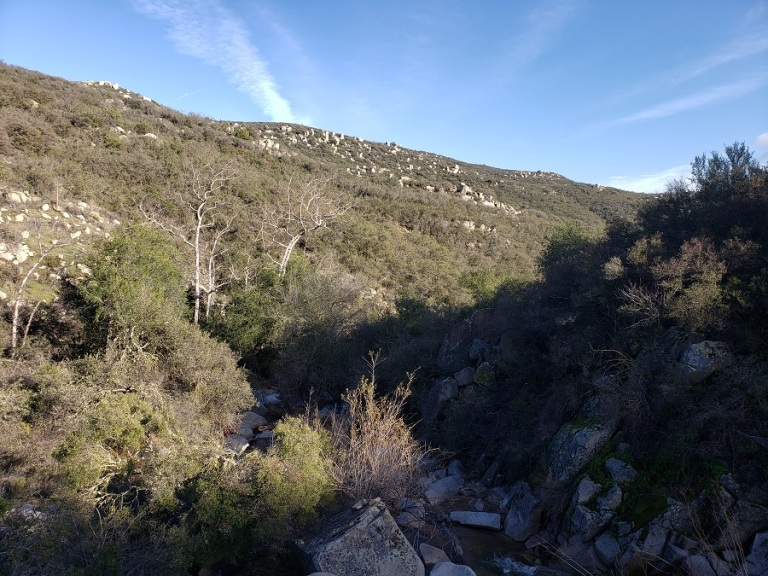 Lion Canyon, Cleveland National Forest