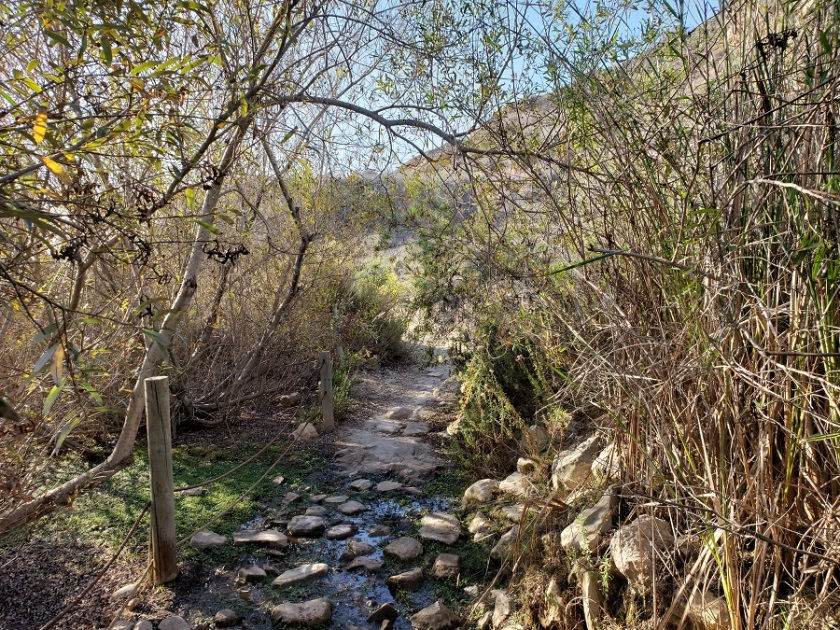 Sunrise Trail, Ocean Trails Reserve, CA