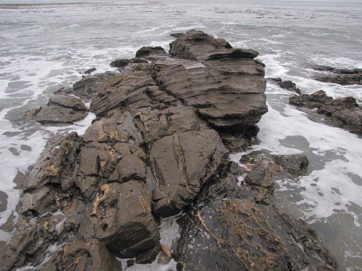 Geology on the Palos Verdes coastline at the bottom of the Sunrise Trail