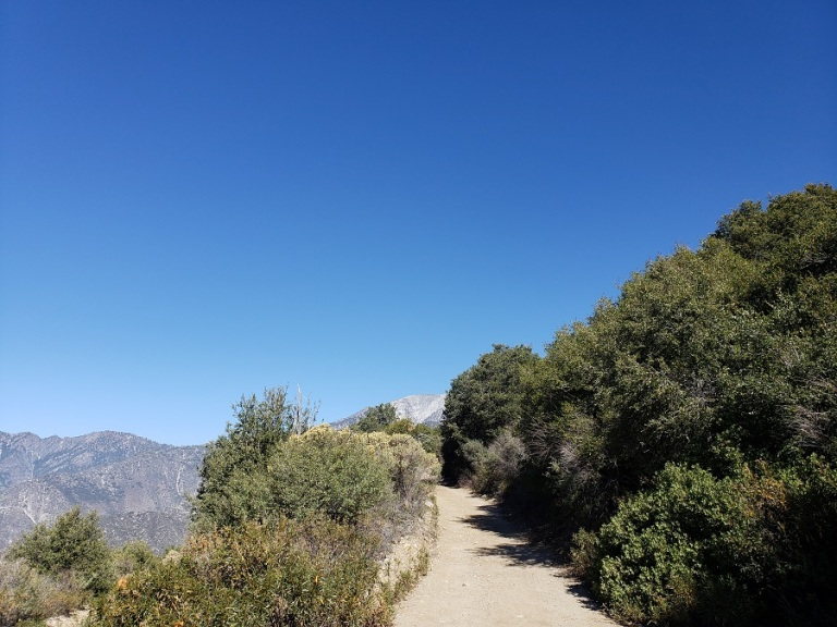 Sunset Peak, Angeles National Forest
