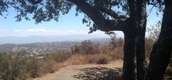 Prajna Tree, Los Angeles, CA