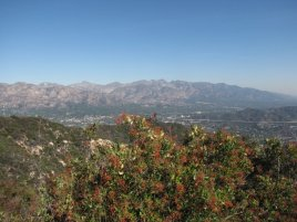 View of the San Gabriel Mountains from the top of the Beaudry Loop