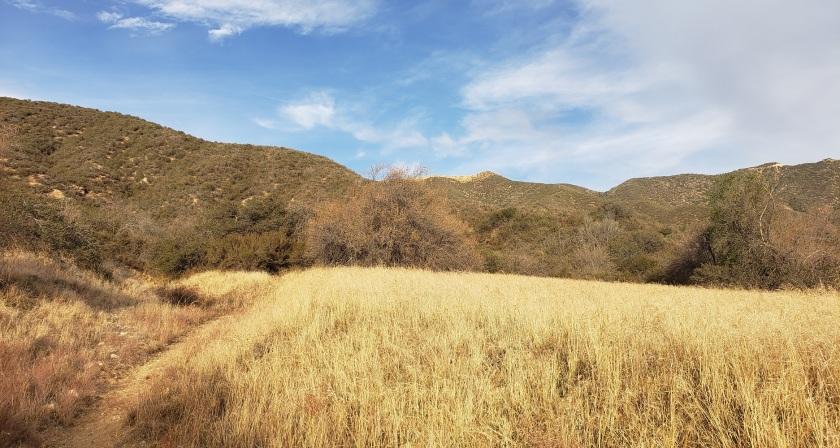 Wildwood Canyon State Park, Yucaipa, CA