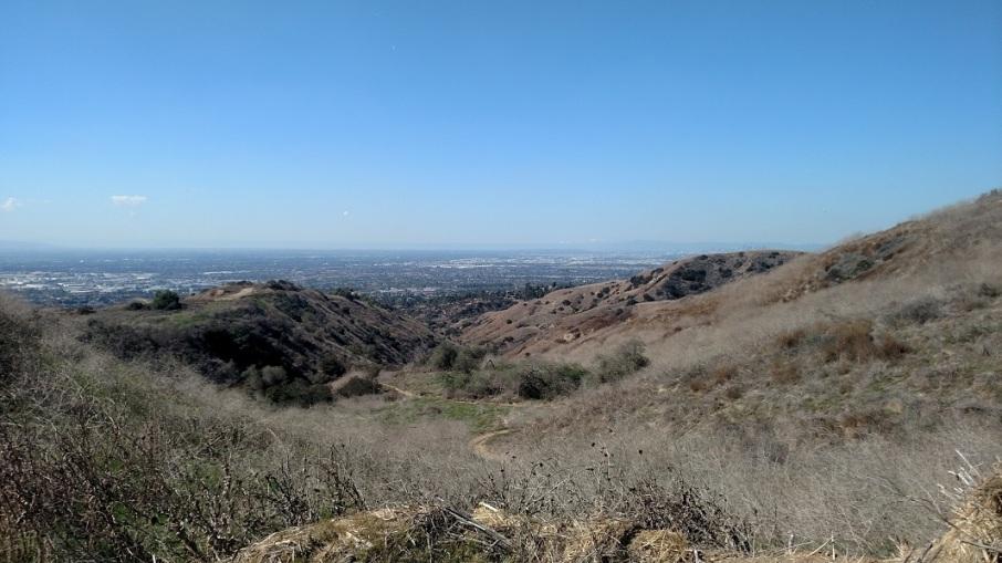 Worsham Canyon, Puente Hills, CA