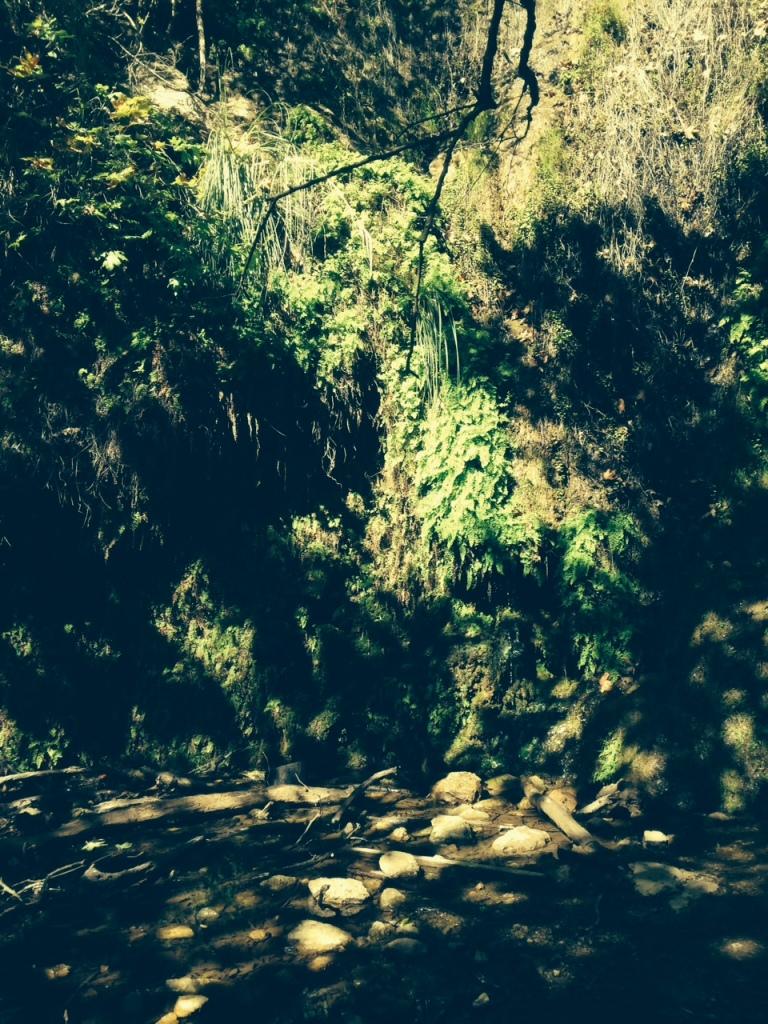 Escondido Canyon, Santa Monica Mountains, Malibu, CA