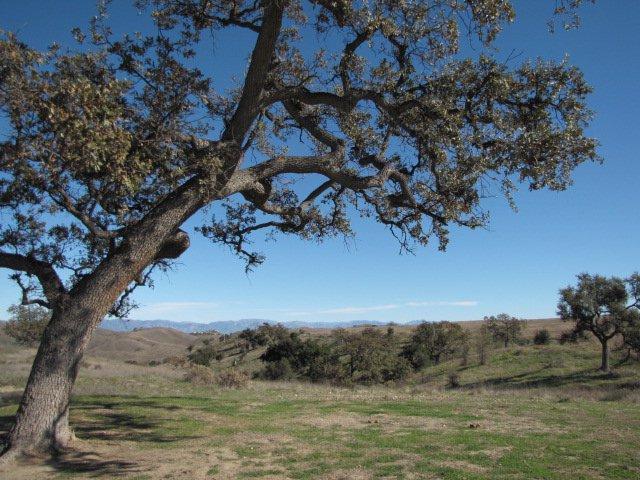 Lasky Mesa, San Fernando Valley, CA