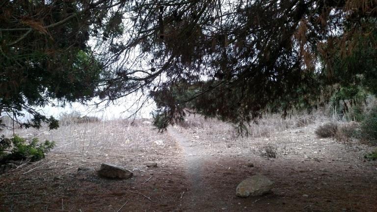 Lunada Canyon Trail, Rancho Palos Verdes