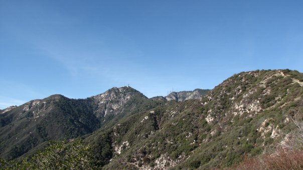Mt. Wilson from the San Olene Fire Road