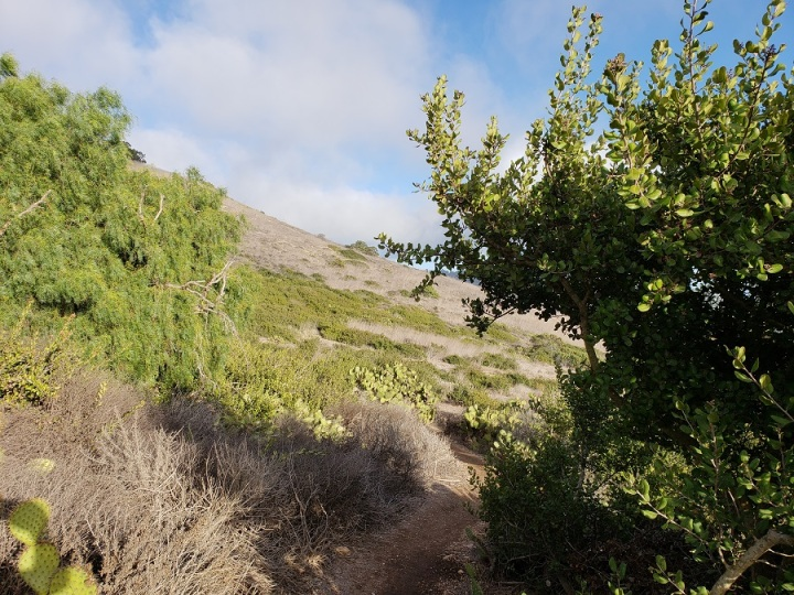 Barkentine Trail, Rancho Palos Verdes, CA