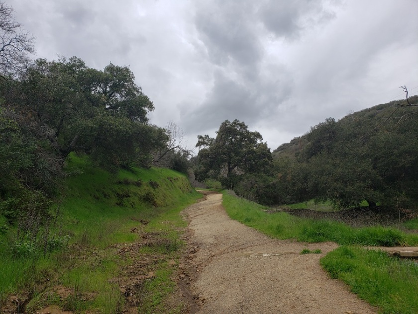 Bee Rock Trail, Griffith Park