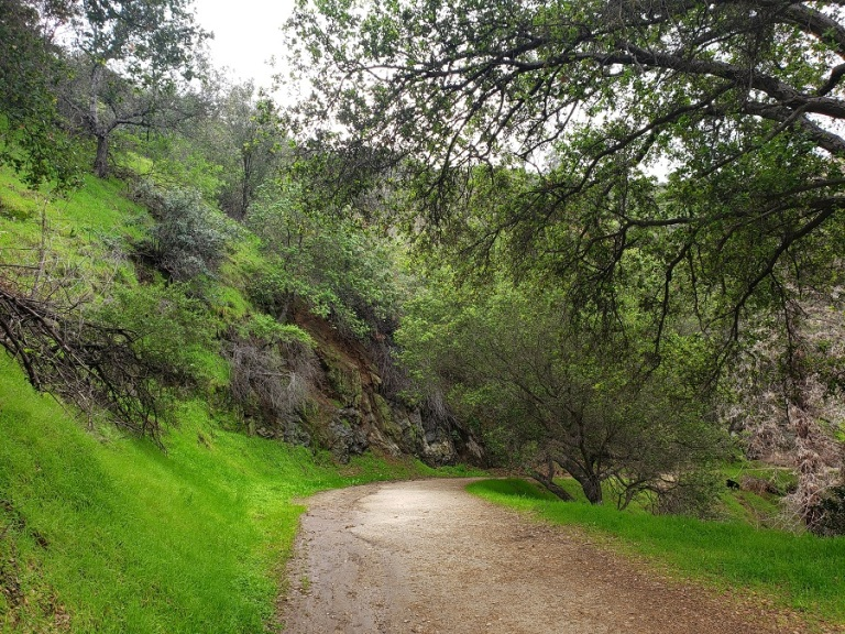 Upper Old Zoo Trail, Griffith Park, Los Angeles