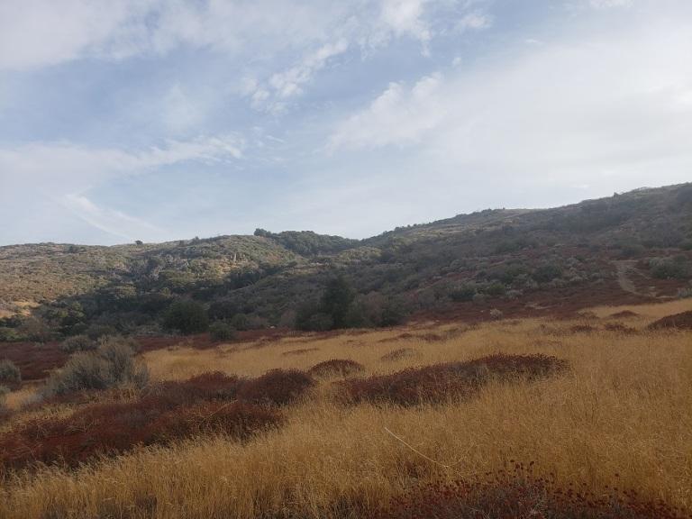Mt. McDill, Palmdale, CA