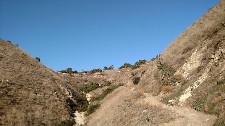 Rattlesnake Trail, Filiorum Reserve
