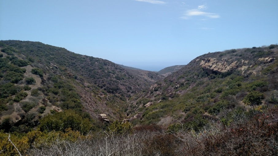 Deer Canyon, Crystal Cove State Park