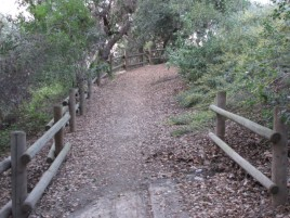 Bridle trail north of Toyon Park