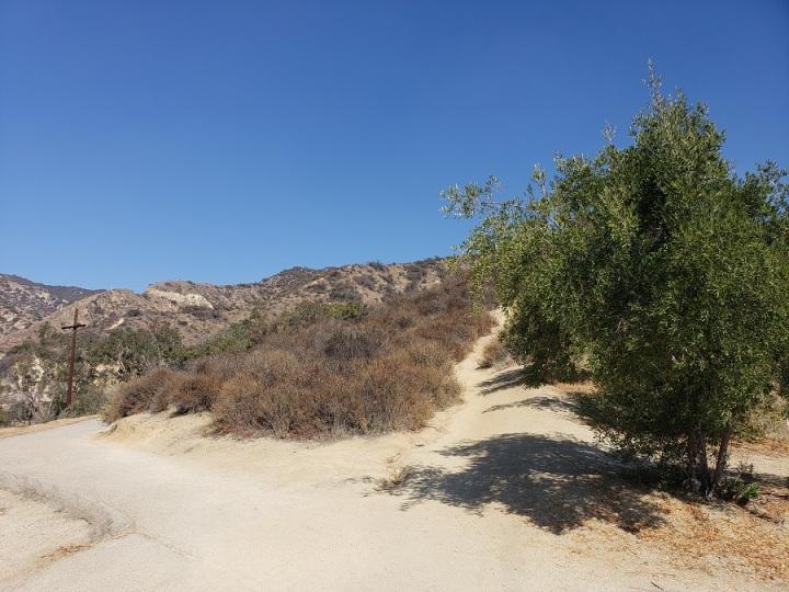 Green Cross trail, Glendale, CA