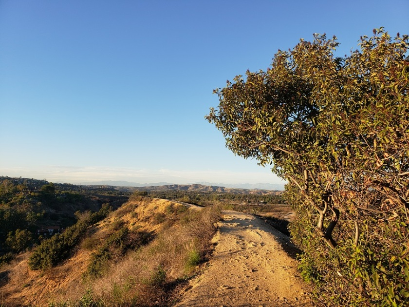 Peters Canyon Regional Park, Orange, CA