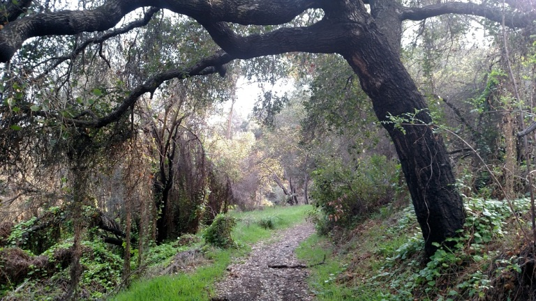 Sunset Trail, Will Rogers State Historic Park