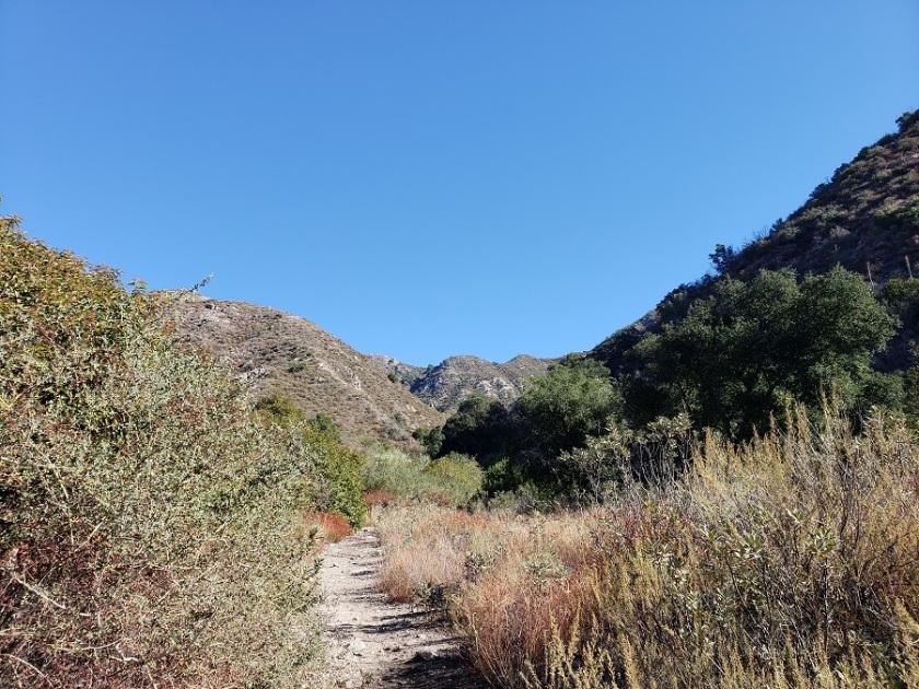 Dunsmore Canyon, Deukmejian Wilderness Park, Glendale, CA