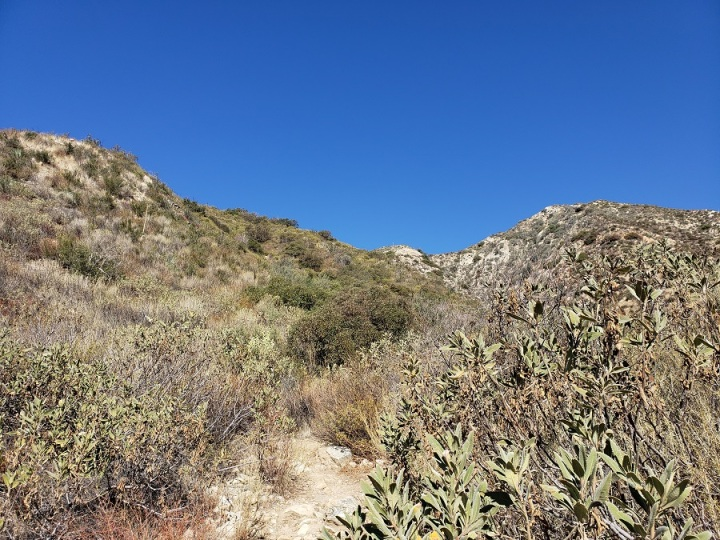 Le Mesnager Trail, Deukmejian Wilderness Park