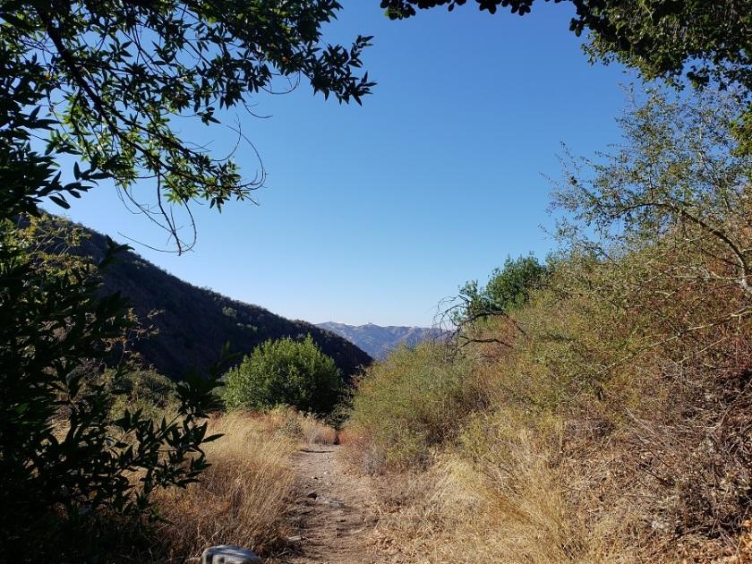 Dunsmore Canyon, Glendale, CA
