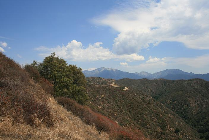 Mt. Baldy from the ridge line