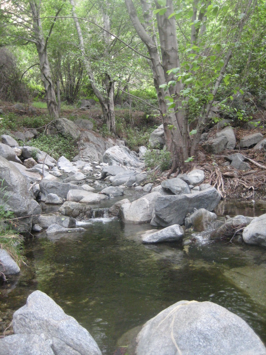 Fish Creek, Angeles National Forest, CA
