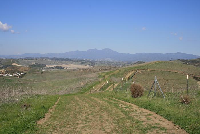 Old Saddleback from the West La Ronda Trail