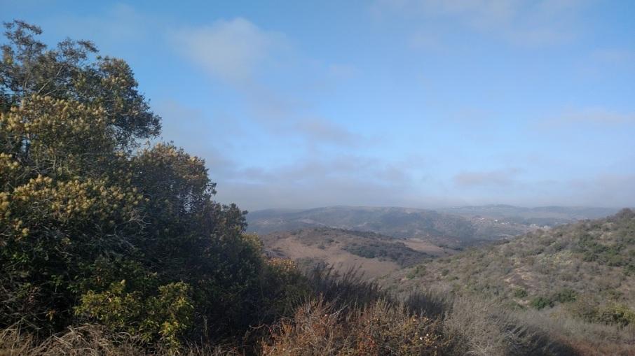 Cattle Crest Trail, Irvine, CA