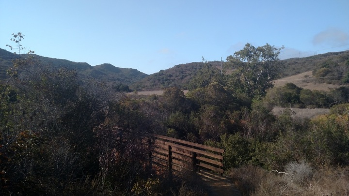 Shady Oaks Trail, Irvine, CA